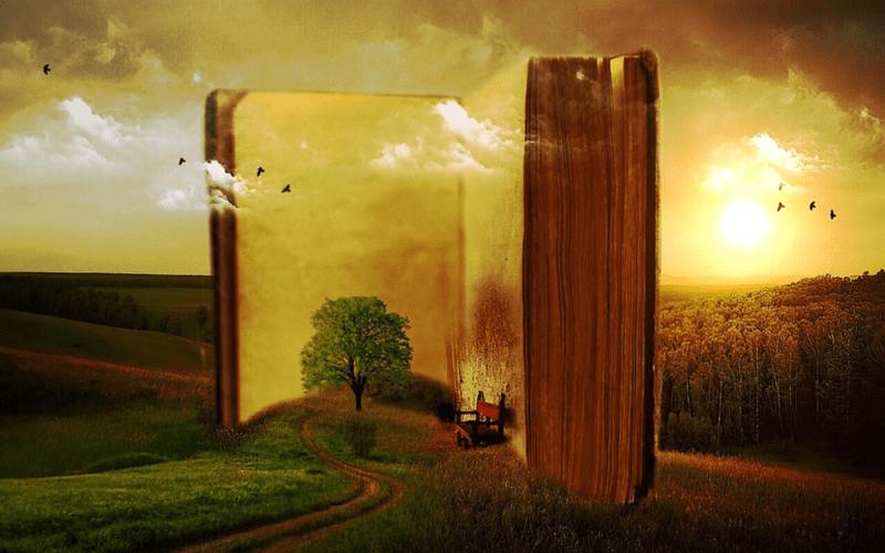 Perché Leggere Un Libro